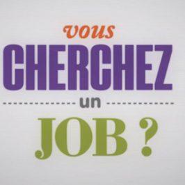 Tweeter pour pallier la crise de l'emploi, c'est possible !